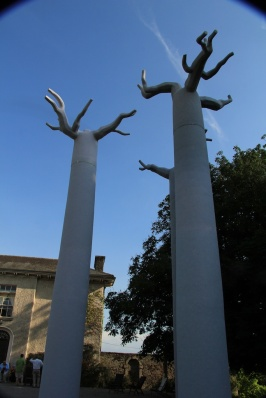 The 'trees' from my Cathedral will be on display just for this week due to the fine weather